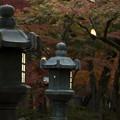 写真: 紅葉灯篭