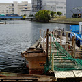 写真: 神奈川区の風景