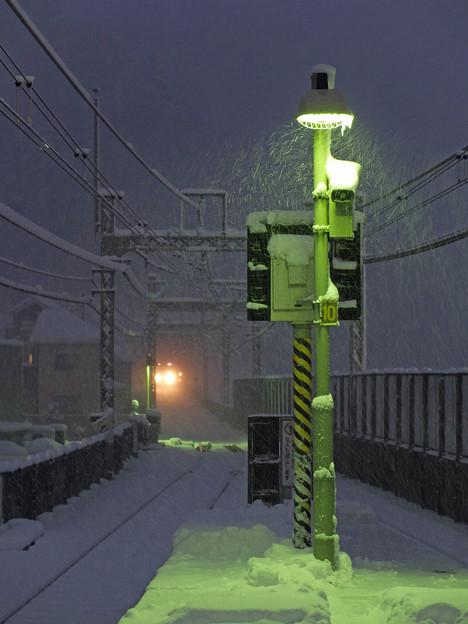 舞い落ちる雪