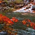 写真: 紅葉の石狩川