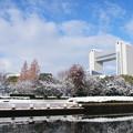 写真: 20141218国際会議場(2)