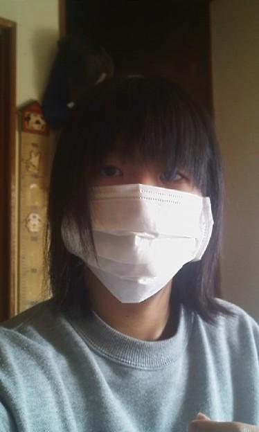 でかい マスク