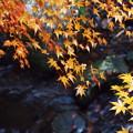 写真: 三郎の滝7