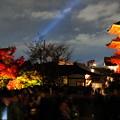 写真: 夜秋