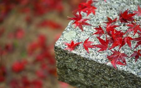 鍬山神社85