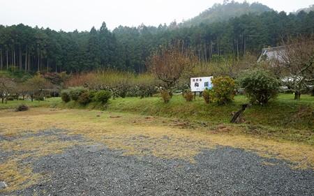 龍興寺06