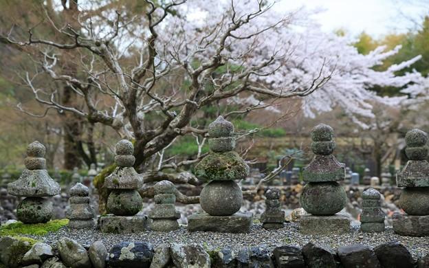 化野念仏寺21