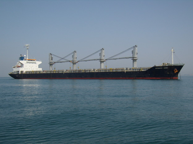 Bulk carrier - OCEANIC HAWK
