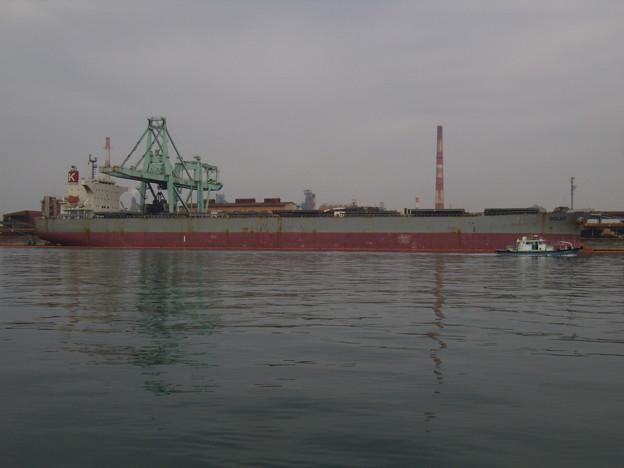 Bulk carrier - DOLCE