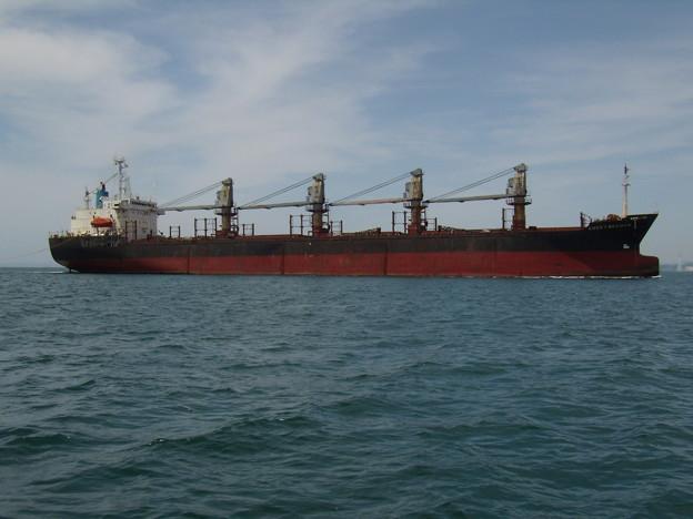 航路を進む Bulk carrier LUCKY SEAMAN