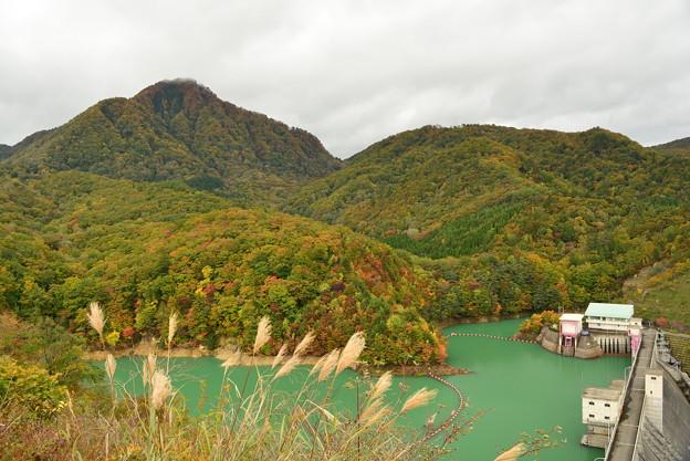写真: 入畑ダムと紅葉