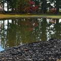 毛越寺の池