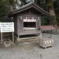 Photos: 鎌倉八幡3