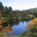 緑沼の紅葉