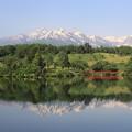 松ヶ峯から望む妙高山