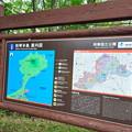 Photos: 和琴半島