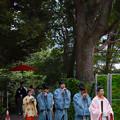 写真: 東郷神社 (3)