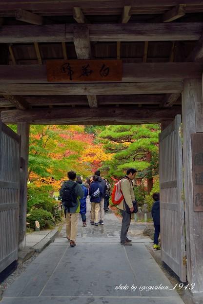 Photos: 円通院 山門
