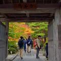 写真: 円通院 山門