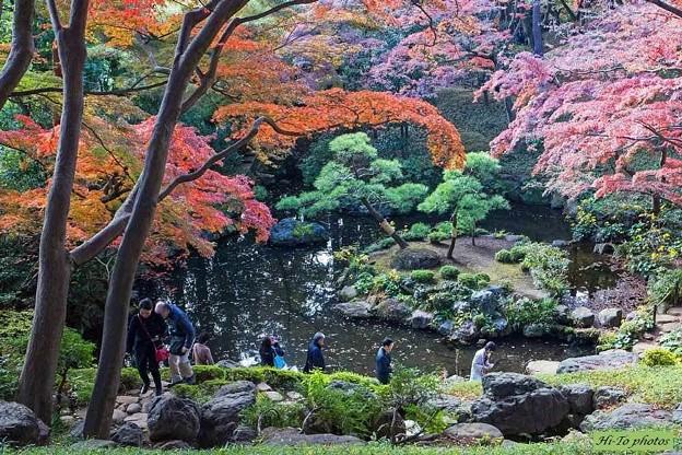 錦色の庭園