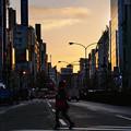 朝の靖国通り