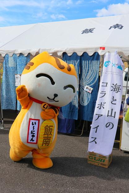 第27回 コスモス祭 (54)