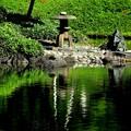 小石川庭園の池