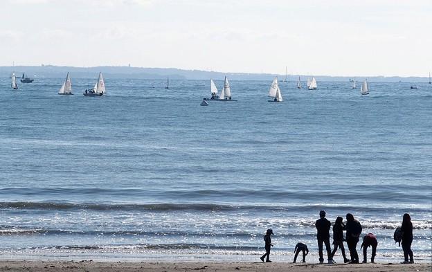 写真: 海で遊ぶ1