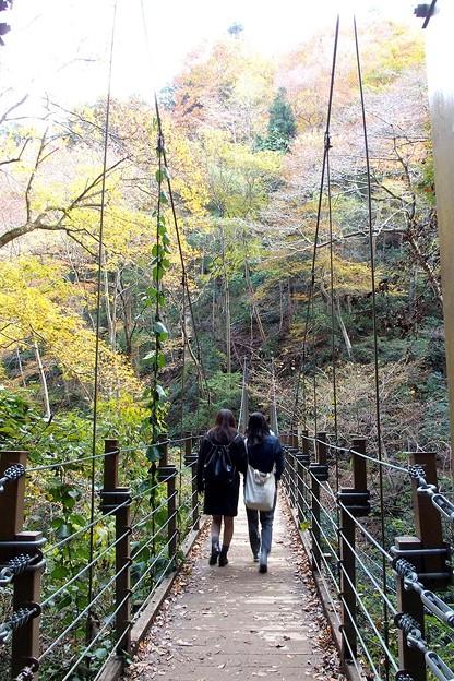 写真: 吊り橋