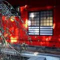 写真: 江島神社