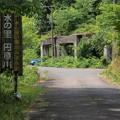 写真: P62001264