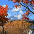 写真: 富士と紅葉