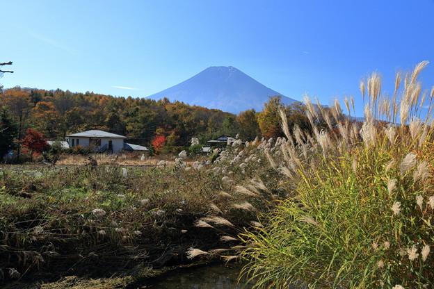 忍野からの富士山2