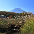 写真: 忍野からの富士山2