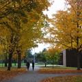 Photos: The Campus 10-20-14