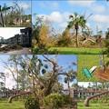 Photos: After the Storm I 9-15-17