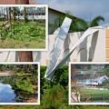 Photos: Neighbors after Irma