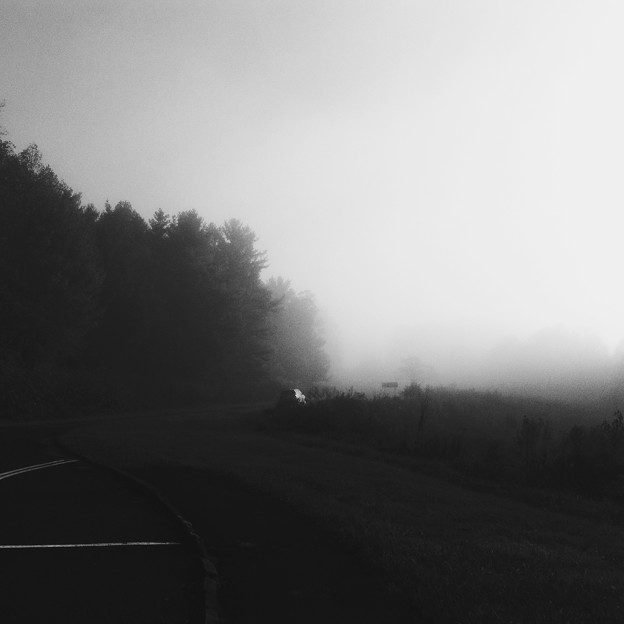 In the Mist 10-14-17