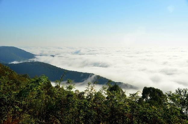 写真: The Sea of Clouds 10-14-17