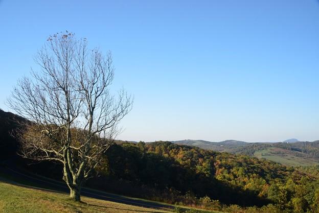 The Saddle Overlook II 10-14-17
