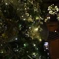 写真: Ornaments I 12-3-17