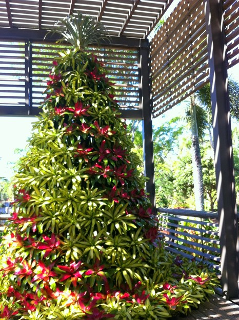 Botanical Garden Christmas Tree 2017