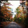写真: Kimball Pond Road 10-19-17