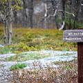 Mt. Battie Trail 4-27-10