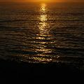 The Sun Shines Bailey Island