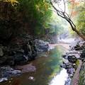 Photos: 清滝渓谷