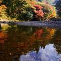 Photos: 谷底の紅葉