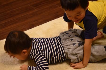 絨毯クリーニング (3)
