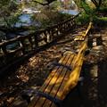 写真: なんと翡翠の池が干上がっている・・・ちょっと落ち着こう