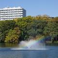 写真: 清々しい虹を見た日